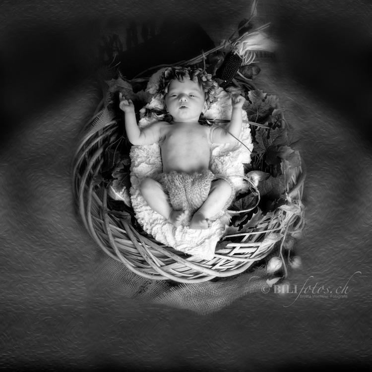 neugeborene shooting _Bilifotos.ch Individuelles Schwangerschaft – Newborn Shooting Kombi Angebot